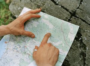 map-ms-web